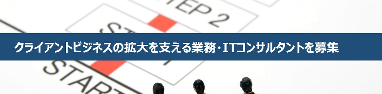 業務/ITコンサルタント募集要項